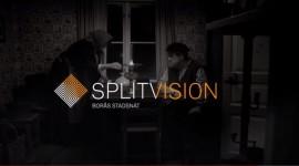 splitvision